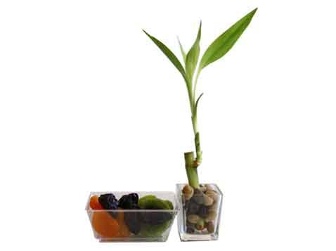 לאקי במבוק בשילוב פירות יבשים
