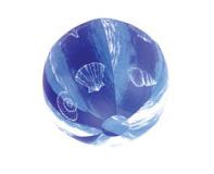 כדור ים